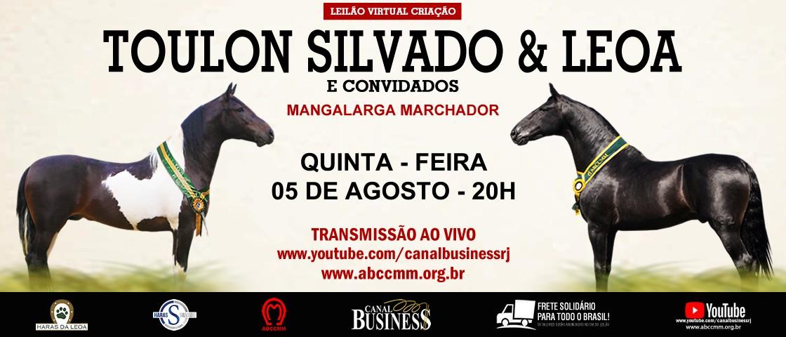 Slide SLIDE LEILAO CRIAÇÃO HARAS TOULON, LEOA E CONVIDADOS