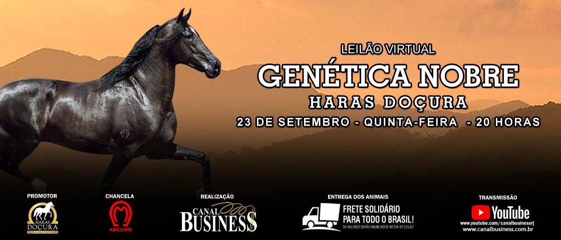 Slide SLIDE LEILAO GENETICA NOBRE HARAS DOCURA