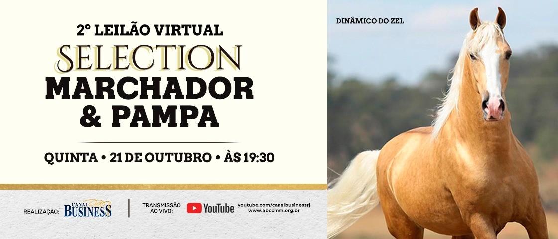 Slide 2ºLEILÃO VIRTUAL SELECTION MARCHADOR & PAMPA